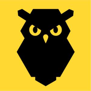 The Grumpy Owls